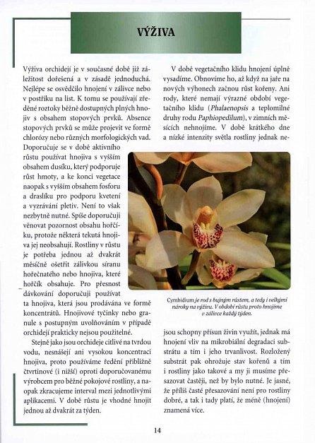 Náhled Orchideje - Rady * péče * pěstování