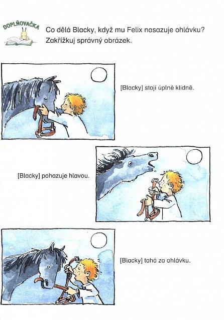 Náhled Prázdniny s poníky - Moje první čtení - Angličtina