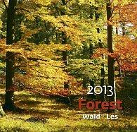 Kalendář nástěnný 2013 - Forest