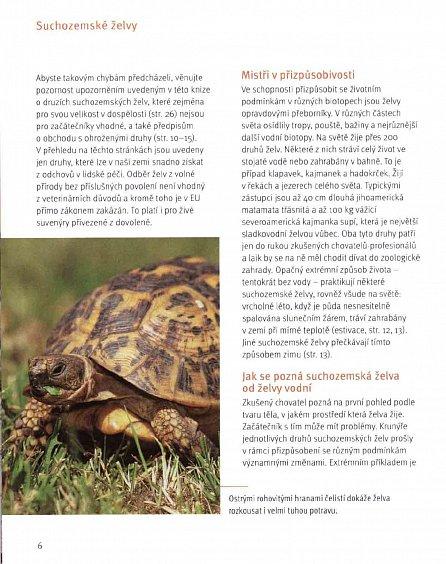 Náhled Suchozemské želvy - Svědkové pravěku v domácím teráriu