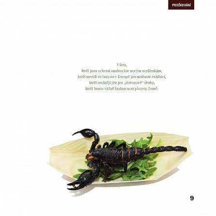 Náhled Hmyz na talíři