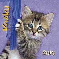 Kočky - nástěnný kalendář 2013