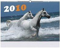 Koně 2010 - nástěnný kalendář