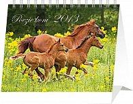 Kalendář 2013 stolní - Koně Christiane Slawik Praktik, 16,5 x 13 cm