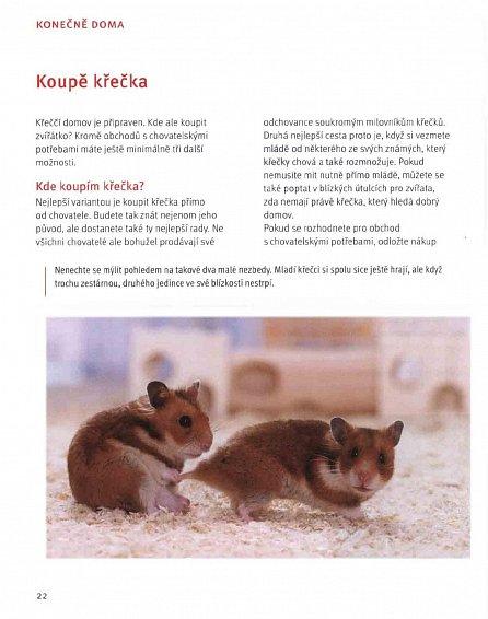 Náhled Křeček - Základy péče o malého sólistu