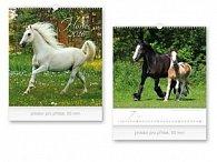 Horses 2016 - nástěnný kalendář