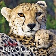 Svět divočiny - nástěnný kalendář 2014