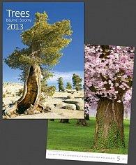 Trees - nástěnný kalendář 2013
