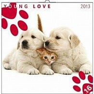 Kalendář 2013 poznámkový - Young Love Ko