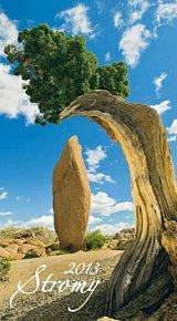 Stromy - nástěnný kalendář 2013