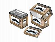 Art: Mustachios - krabička na karty