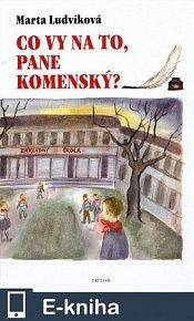 Co vy na to, pane Komenský? (E-KNIHA)