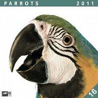 Parrots 2011 - nástěnný kalendář