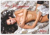 Kalendář 2015 - Girls In Flagranti - nástěnný s prodlouženými zády