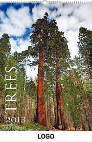 Kalendář 2013 - Stromy praktik, 33 x 46 cm