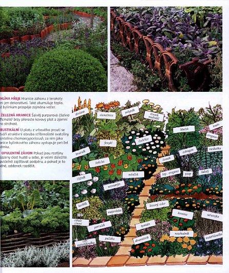 Náhled Bylinková radost - Pěstování, péče, použití