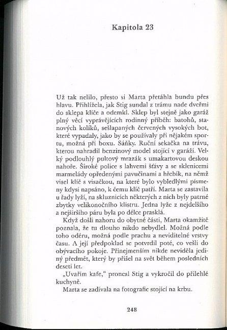 Náhled Syn (paperback)