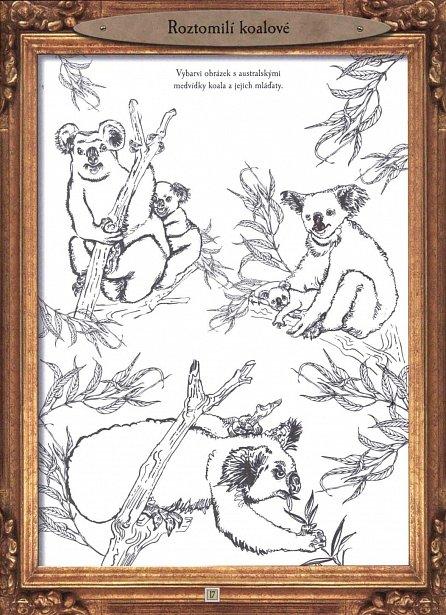 Náhled Zvířata - Úžasný svět savců