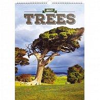 Kalendář nástěnný 2017 - Stromy