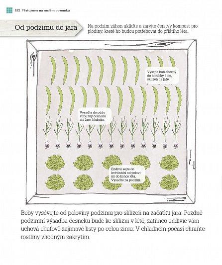 Náhled Vypěstujte si, co sníte - Jak z metru čtverečního sklidit bohatou úrodu