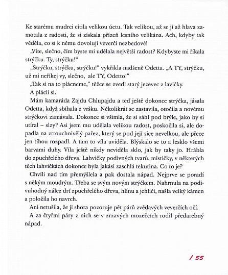 Náhled Víla Odetta - Detektivní agentura Popleta