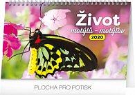 Kalendář stolní 2020 - Život motýlů – motýlov CZ/SK, 23,1 × 14,5 cm