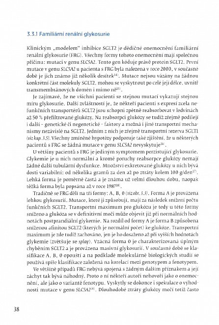 Náhled Ledviny a léčba diabetu: současnost a perspektivy terapie glifloziny