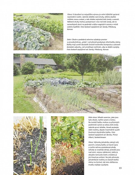 Náhled Zahrada na balících slámy - Převratná metoda pěstování zeleniny: Kdekoli •  rychleji • bez okopávání a pletí