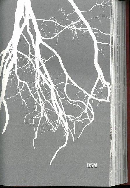 Náhled Smečka 4: Kořeny