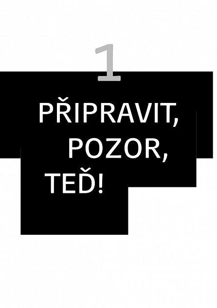 Náhled Jsem v tom! Těhotenský manuál českých maminek