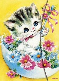 Zápisník Kitty velký