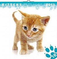 Kalendář 2013 poznámkový - Koťata, 30 x 60 cm