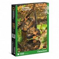 Puzzle National Geographic 1000 dílků Šimpanz