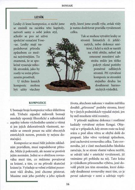 Náhled Bonsaje - Rady * péče * pěstování