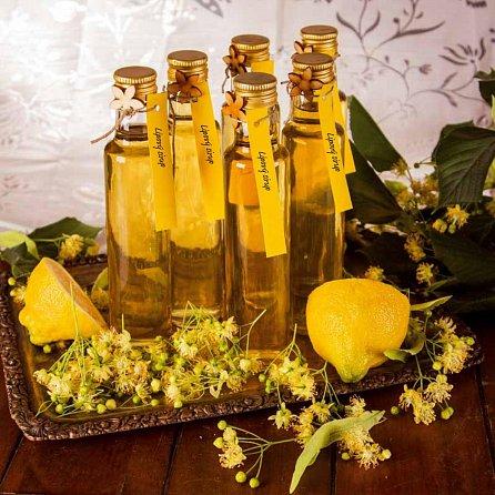 Náhled Zvládnu to sám: Domácí sirupy a limonády
