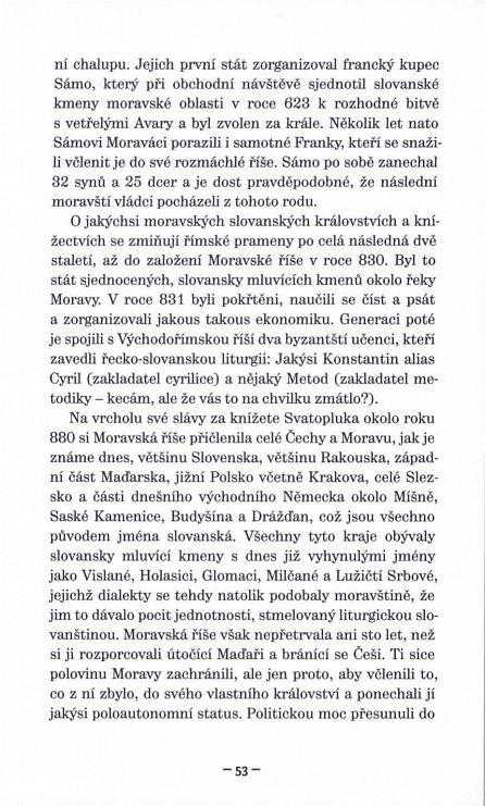 Náhled Češi na vlásku - Příručka národního přežívání