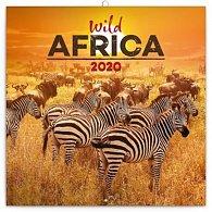 Kalendář poznámkový 2020 - Divoká Afrika, 30 × 30 cm
