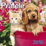Přátelé - nástěnný kalendář 2015