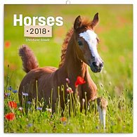 Kalendář poznámkový 2018 - Koně - Christiane Slawik, 30 x 30 cm