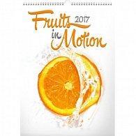 Kalendář nástěnný 2017 - Ovoce v pohybu