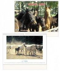 Koně 2006 - nástěnný kalendář