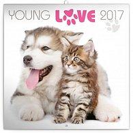 Kalendář poznámkový 2017 - Young Love/koťata & štěňata