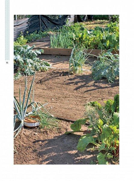 Náhled Úsporné zavlažování zahrady - Jak ušetřit až 90 procent vody