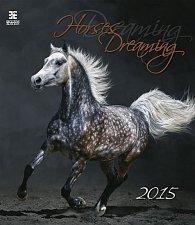 Kalendář nástěnný 2015 - Horses Dreaming