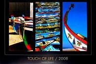 Touch of Life-L.Pinsard 2008 - nástěnný kalendář