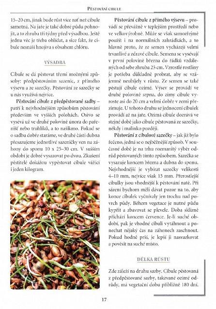 Náhled Cibule - Rady, krása, zdraví, recepty