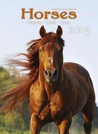 Kalendář nástěnný 2015 - Koně