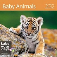 Kalendář nástěnný 2012 - Baby Animals