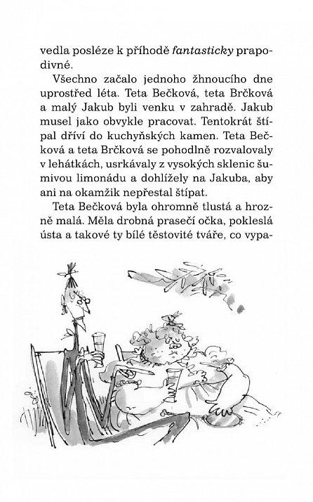 Náhled Jakub a obří broskev