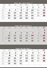 Kalendář nástěnný 2017 - 3měsíční/šedý s jmenným kalendáriem